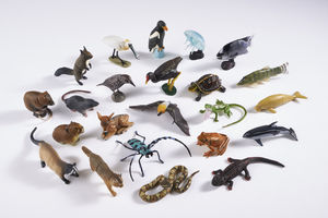Set Of Five Zoo Pod Pets