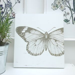 Butterfly Wall Art Picture