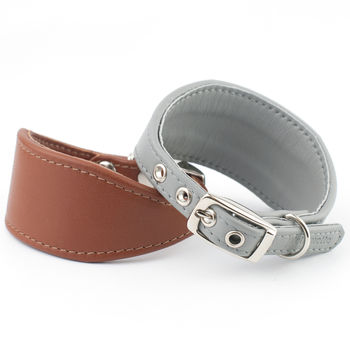 Nappa Leather Italian Greyhound Collar