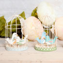 Cute Birds In Cage Decoration