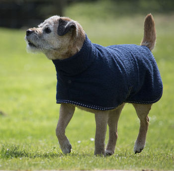 Towelling Dog Coat And Mini Towel