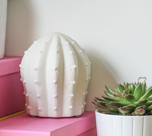 Porcelain Cactus Light - lights & lanterns