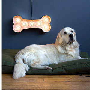 Dog Bone Light