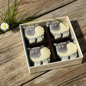 Chocolate Sheep - food gifts