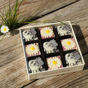 Cows And Daisies Chocolates