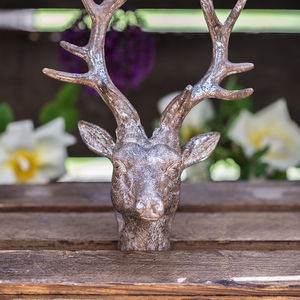 Wall Mounted Reindeer Head