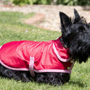 Limited Edition Red Waterproof Rain Coat For Dogs