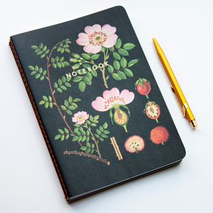 Botanical Notebook Collection - vintage botanics