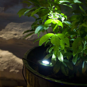 Set Of Two Solar LED Spot Lights