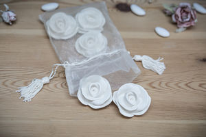 Scented Roses By Mathilde M