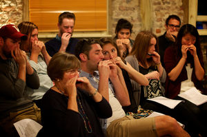 Harmonica School Experience For One - experiences