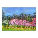 Pink Blossom Print