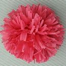 20% Off Tissue Paper Tassel Pompom Pom Pom