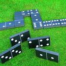 Giant Dominos Garden Game