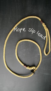 Rope Slip Lead - dog leads & harnesses