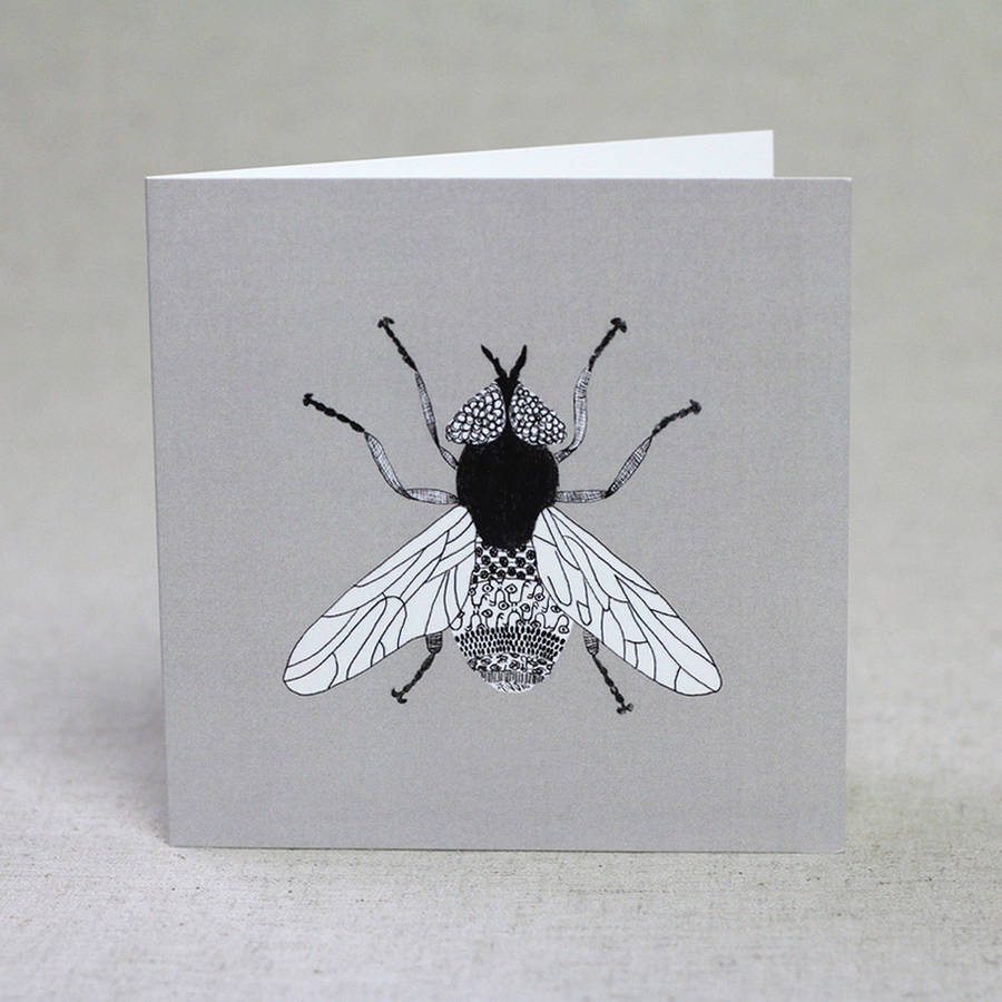 Insect Card