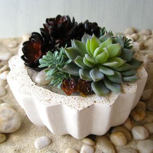 Artificial Succulent Garden In Cement Bowl - terrariums