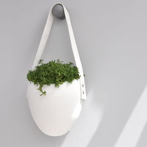 Hanging Planter - prepare for spring