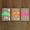Set Of A6 Metallic Weather Notebooks/Travel Journals
