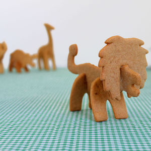 Bake Your Own 3D Safari Animal - children's cooking