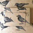 Hand Printed Jay And Large Wren Bird Gift Wrap