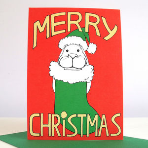 'Bunny Stocking' Pack Of Six Christmas Cards - cards