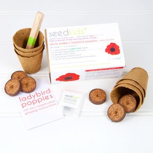Seedkids* Personalised Ladybird Poppies Kit - gifts for children