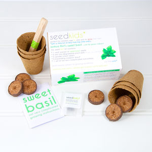 Seedkids* Personalised Sweet Basil Kit - gardening