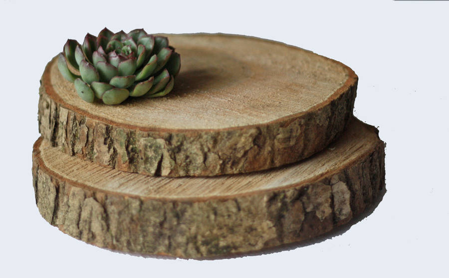 Wooden Tree Slice Wedding Centrepiece Or Cake Stand By The