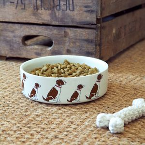 Springer Spaniel Dog Bowl - food, feeding & treats