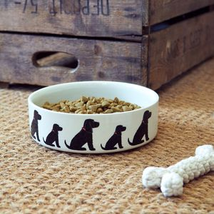 Cocker Spaniel Dog Bowl