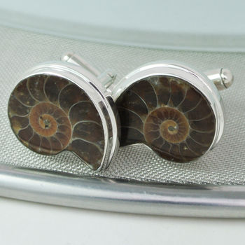 Ammonite Cufflinks Darker  set in Sterling Silver