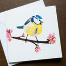 Blue Tit Blossom Greetings Card