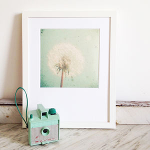 Dandelion Clock Photographic Print - gallery wall edit