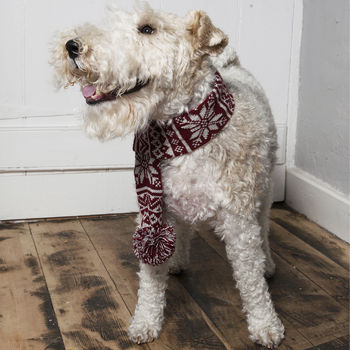 Knitted Snowflake Dog Scarf