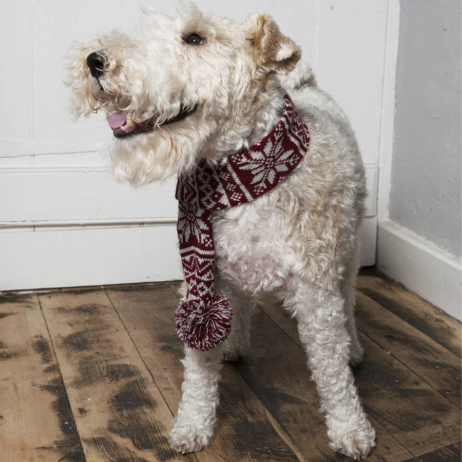 knitted snowflake dog scarf by mutts & hounds notonthehighstreet.com