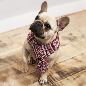 Knitted Snowflake Dog Scarf - clothes