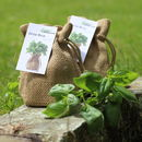 Basil Jute Bag Grow Set