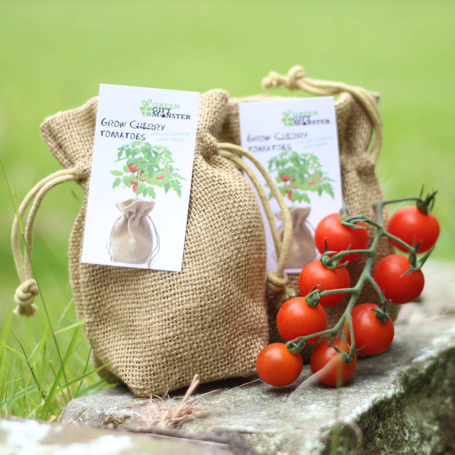 Cherry Tomato Jute Bag Grow Set