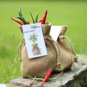 Jute Bag Chilli Growing Set - gardening