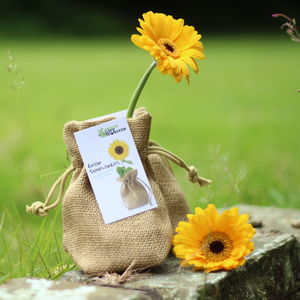 Sunflower Jute Bag Grow Set - gifts for gardeners
