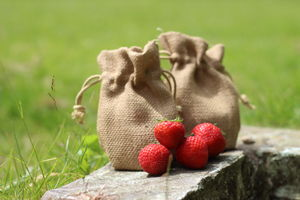 Strawberries Jute Grow Set - seeds & bulbs