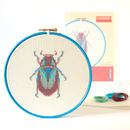 Beetle Counted Cross Stitch Kit
