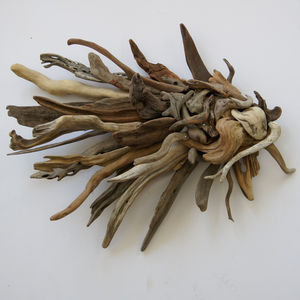 Driftwood Fish Sculpture