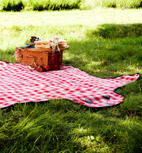 Bear Skin Picnic Blanket - shop by price
