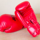 Personalised Boxing Gloves Junior 6oz/8oz
