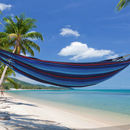 Iguana Ocean Blue Single Hammock
