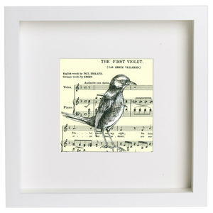 'The First Violet' Music Paper Ink Drawing - animals & wildlife