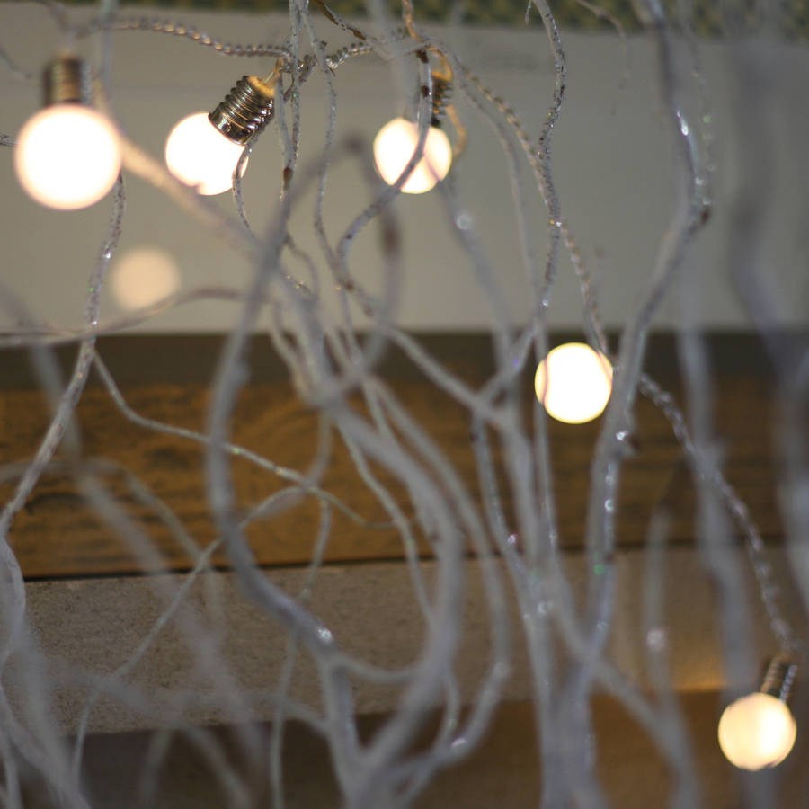 string of light bulbs 2m by the wedding of my dreams notonthehighstreet.com