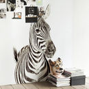 Zebra Magnetic Wallpaper